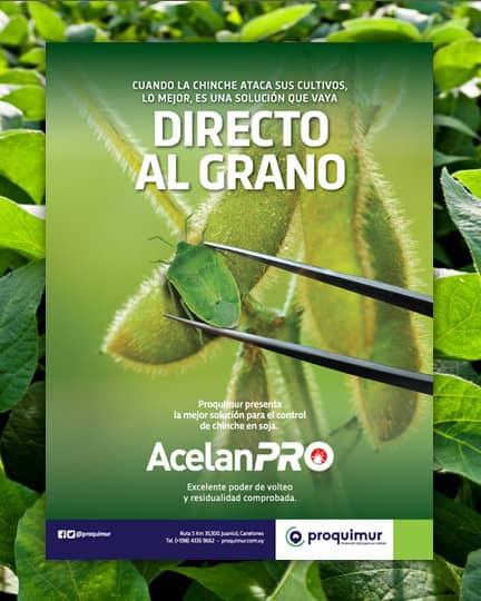 AcelanPro